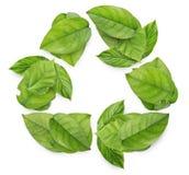 αφήνει το σύμβολο ανακύκλωσης Στοκ φωτογραφία με δικαίωμα ελεύθερης χρήσης