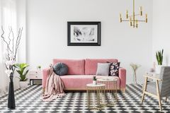 Αφίσα επάνω από το ρόδινο καναπέ στο ευρύχωρο εσωτερικό καθιστικών με τη διαμορφωμένες πολυθρόνα και τις εγκαταστάσεις Πραγματική στοκ φωτογραφίες
