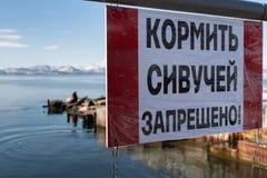 Αφίσα στα ρωσικά: Είναι απαγορευμένο για να ταΐσει τα λιοντάρια θάλασσας Stellers! Στοκ εικόνα με δικαίωμα ελεύθερης χρήσης