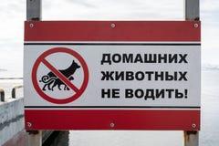 Αφίσα στα ρωσικά: Μην οδηγήστε τα κατοικίδια ζώα! Στοκ Εικόνες