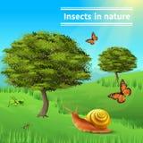 Αφίσα φύσης εντόμων σαλιγκαριών Στοκ εικόνα με δικαίωμα ελεύθερης χρήσης