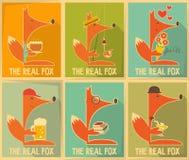 Αφίσες αλεπούδων Στοκ Εικόνες
