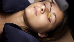 Αφαίρεση των παλαιών μαστιγίων Το beautician αφαιρεί τα eyelashes με τα τσιμπιδάκια Το κορίτσι βρίσκεται στη διαδικασία κάτω από  απόθεμα βίντεο