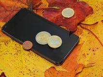 Αφαίρεση φθινοπώρου με τα χρήματα Στοκ φωτογραφία με δικαίωμα ελεύθερης χρήσης