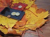 Αφαίρεση φθινοπώρου με τα χρήματα Στοκ Εικόνες