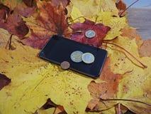 Αφαίρεση φθινοπώρου με τα χρήματα Στοκ Φωτογραφίες