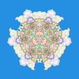 αφαιρέστε floral διακοσμητικ Σχέδιο σχεδίων δαντελλών Στοκ Φωτογραφία