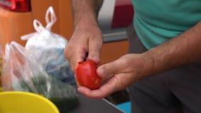 Αφαιρώντας τον πυρήνα τις ντομάτες υπαίθρια φιλμ μικρού μήκους