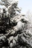 Αφγανιστάν κατά τη διάρκεια του χειμώνα στοκ φωτογραφίες με δικαίωμα ελεύθερης χρήσης