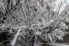 Αφγανιστάν κατά τη διάρκεια του χειμώνα στοκ εικόνες