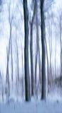 Αφηρημένα δέντρα το χειμώνα Στοκ Εικόνες