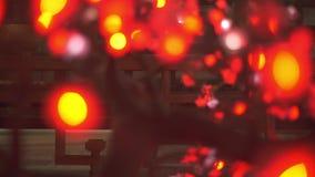 Αφηρημένα κινούμενα φω'τα από το συνθετικό δέντρο sakura με τις ιαπωνικές διακοσμήσεις ύφους απόθεμα βίντεο