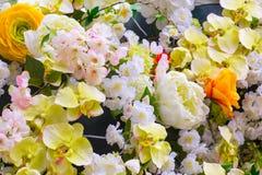 αφηρημένα λουλούδια ανα&si Στοκ Φωτογραφίες