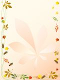 αφηρημένα λουλούδια ανα&si Στοκ Εικόνα