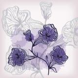 αφηρημένα λουλούδια ανα&si Στοκ Φωτογραφία