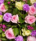 αφηρημένα λουλούδια ανα&si Κινηματογράφηση σε πρώτο πλάνο Στοκ Φωτογραφίες