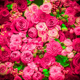 αφηρημένα λουλούδια ανα&si Κινηματογράφηση σε πρώτο πλάνο Στοκ φωτογραφία με δικαίωμα ελεύθερης χρήσης