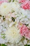 αφηρημένα λουλούδια ανα&si Floral γαμήλιο σκηνικό κινηματογραφήσεων σε πρώτο πλάνο Στοκ φωτογραφίες με δικαίωμα ελεύθερης χρήσης