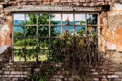Αφηρημένα παράθυρα καταστροφών που περιβάλλονται με τη χλόη και τα παλαιά τούβλα τοίχων Στοκ Εικόνες