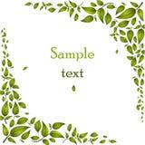 αφηρημένα πράσινα φύλλα ανα&si Στοκ εικόνα με δικαίωμα ελεύθερης χρήσης