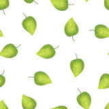 Αφηρημένα πράσινα φύλλα υποβάθρου Στοκ Εικόνες