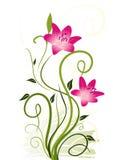 αφηρημένα στοιχεία floral απεικόνιση αποθεμάτων