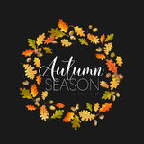 αφηρημένα φθινοπώρου φύλλα φύλλων πλαισίων ανασκόπησης ζωηρόχρωμα Floral σχέδιο εμβλημάτων Στοκ φωτογραφία με δικαίωμα ελεύθερης χρήσης
