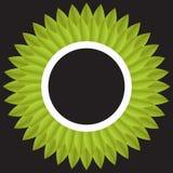 Αφηρημένα φύλλα κύκλων Στοκ Φωτογραφίες