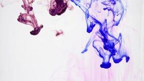 Αφηρημένα χρώματα στο νερό απόθεμα βίντεο