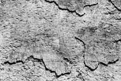 Αφηρημένες μορφές στον τοίχο που αντιπροσωπεύει όπως τις ηπείρους Στοκ εικόνα με δικαίωμα ελεύθερης χρήσης