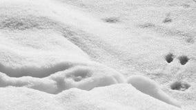 Αφηρημένες μορφές χιονιού Στοκ εικόνα με δικαίωμα ελεύθερης χρήσης