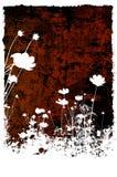 αφηρημένες συστάσεις λουλουδιών β Στοκ φωτογραφίες με δικαίωμα ελεύθερης χρήσης