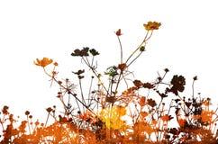 αφηρημένες συστάσεις λουλουδιών διανυσματική απεικόνιση