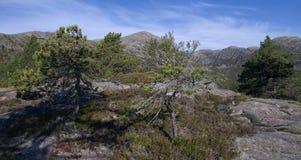 Αφηρημένες τοπίο και αιχμή Στοκ εικόνα με δικαίωμα ελεύθερης χρήσης