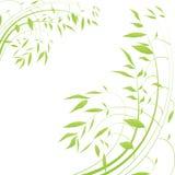 αφηρημένες floral γραμμές ανασκ Στοκ Εικόνες