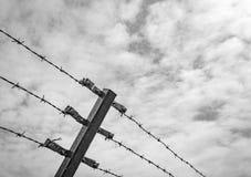 Αφηρημένη άποψη μιας πρόσφατα δημιουργημένης περίφραξης barded-καλωδίων σε μια ευρωπαϊκή περιοχή ελέγχου οικότροφων Στοκ Εικόνες