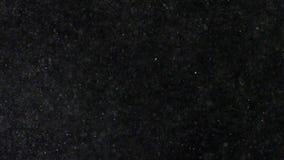 Αφηρημένη άσπρη έκρηξη σκονών στο μαύρο υπόβαθρο απόθεμα βίντεο