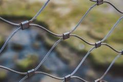 Αφηρημένη έννοια Metall Πράσινη άποψη στη φύση Στοκ Εικόνες