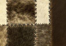 αφηρημένη ανασκόπησης κρεμάστρα γουνών παλτών θηλυκή Στοκ Φωτογραφίες