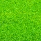 αφηρημένη ανασκόπησης πόλεων όψη σύστασης πάρκων χορτοταπήτων χλόης πράσινη Στοκ Εικόνα