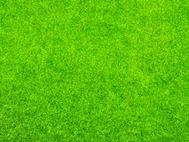 αφηρημένη ανασκόπησης πόλεων όψη σύστασης πάρκων χορτοταπήτων χλόης πράσινη Στοκ εικόνα με δικαίωμα ελεύθερης χρήσης