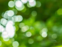 αφηρημένη ανασκόπηση πράσινη Στοκ φωτογραφίες με δικαίωμα ελεύθερης χρήσης