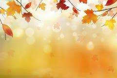 αφηρημένη ανασκόπηση φθινο&p Μειωμένα κόκκινα, κίτρινα, πορτοκαλιά, καφετιά φύλλα φθινοπώρου στο φωτεινό υπόβαθρο Διάνυσμα φθινοπ διανυσματική απεικόνιση