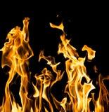 αφηρημένη ανασκόπηση Φλόγες πυρκαγιάς σε μια μαύρη ανασκόπηση Στοκ εικόνα με δικαίωμα ελεύθερης χρήσης