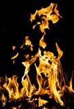 αφηρημένη ανασκόπηση Φλόγες πυρκαγιάς σε μια μαύρη ανασκόπηση Στοκ Εικόνα