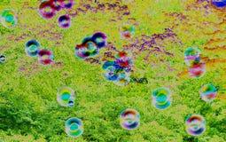 αφηρημένη ανασκόπηση Φυσαλίδες σαπουνιών στη φύση θαμπάδων Στοκ εικόνα με δικαίωμα ελεύθερης χρήσης