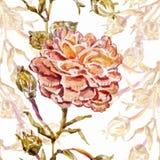 Αφηρημένη ανασκόπηση Watercolor albion Στοκ Εικόνα
