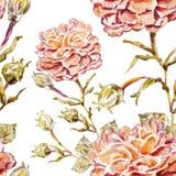 Αφηρημένη ανασκόπηση Watercolor albion Στοκ Φωτογραφίες