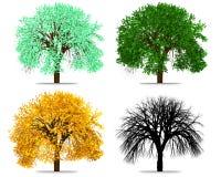 Αφηρημένη απόδοση δέντρων του Four Seasons Απεικόνιση αποθεμάτων