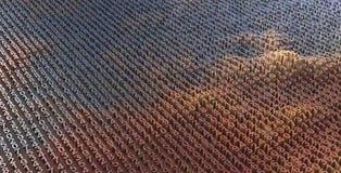 Αφηρημένη εικόνα του υποβάθρου ψηφίων στο μπλε που τονίζεται Στοκ Εικόνες